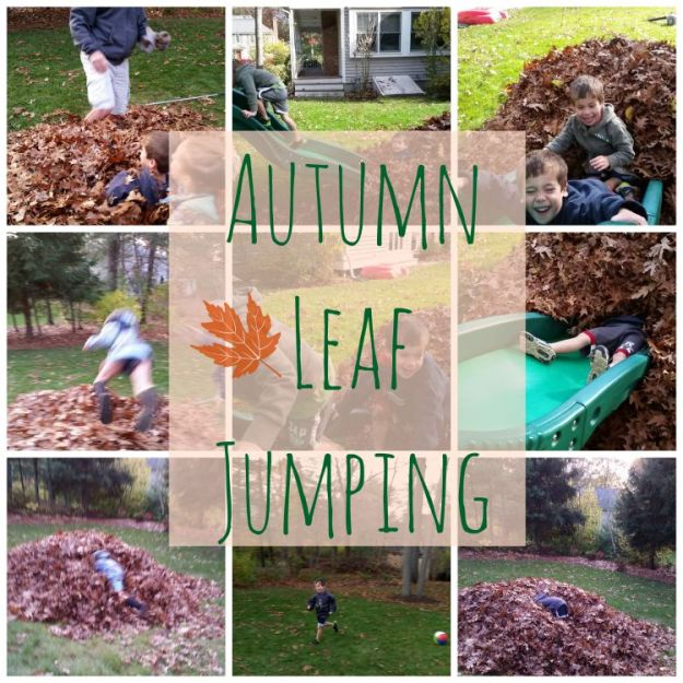 leaf piles