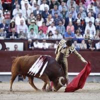 Castella cuatro tardes en Madrid