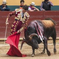 Feria de Córdoba 2016 - Corridas de Toros