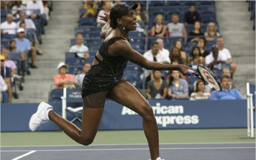 Venus Williams to visit Harlem's Hue Man Bookstore