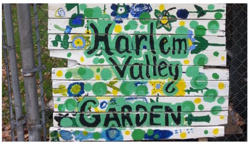 change.org harlem garden petition