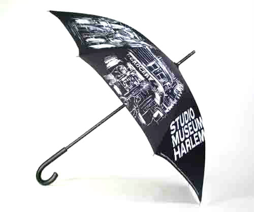 studio in muswum umbrella