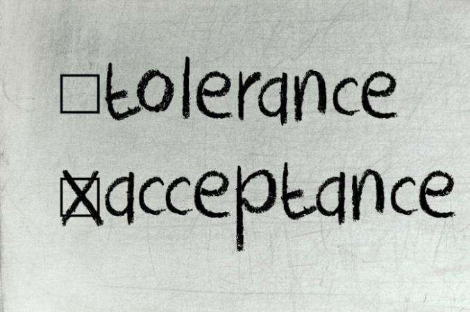 tolerance-vs-acceptance in harlem1