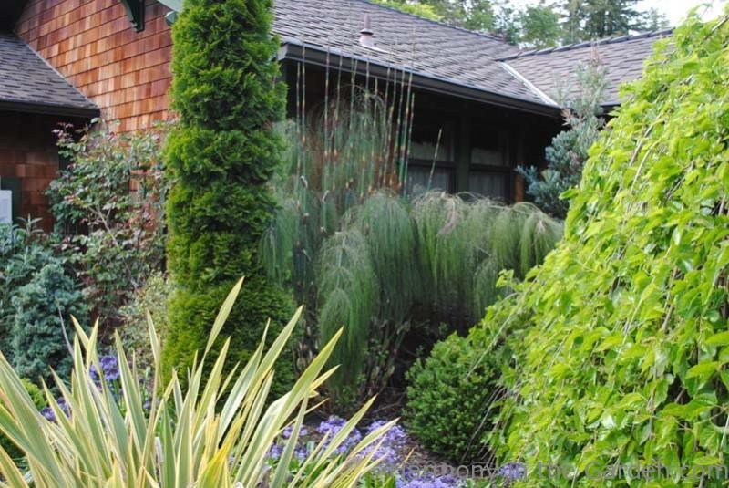 Garden Designers Roundtable – Using Texture In The Garden