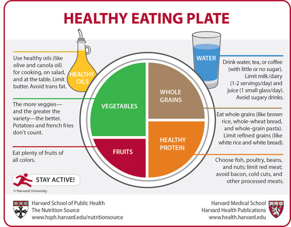 The Healthy Eating Plate Harvard39s Answer To Usda Dietary