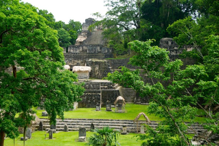 The ruins of Tikal are very similar to those of Palenque -- tucked away into the jungle, quiet, and majestic.