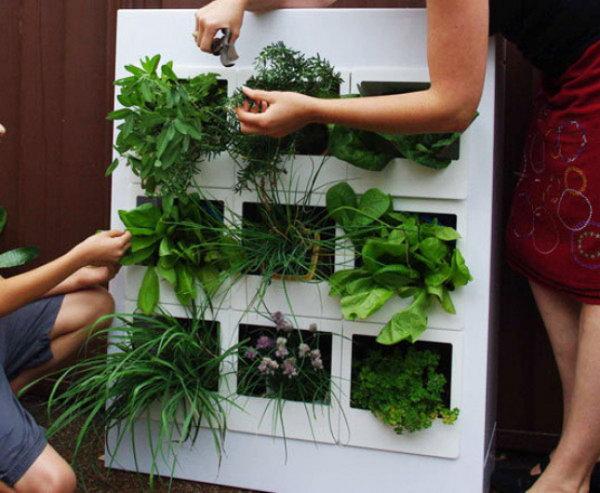 Permalink to Indoor Herb Garden Planter
