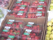 Eastern Produce Shipments from Florida to Maine
