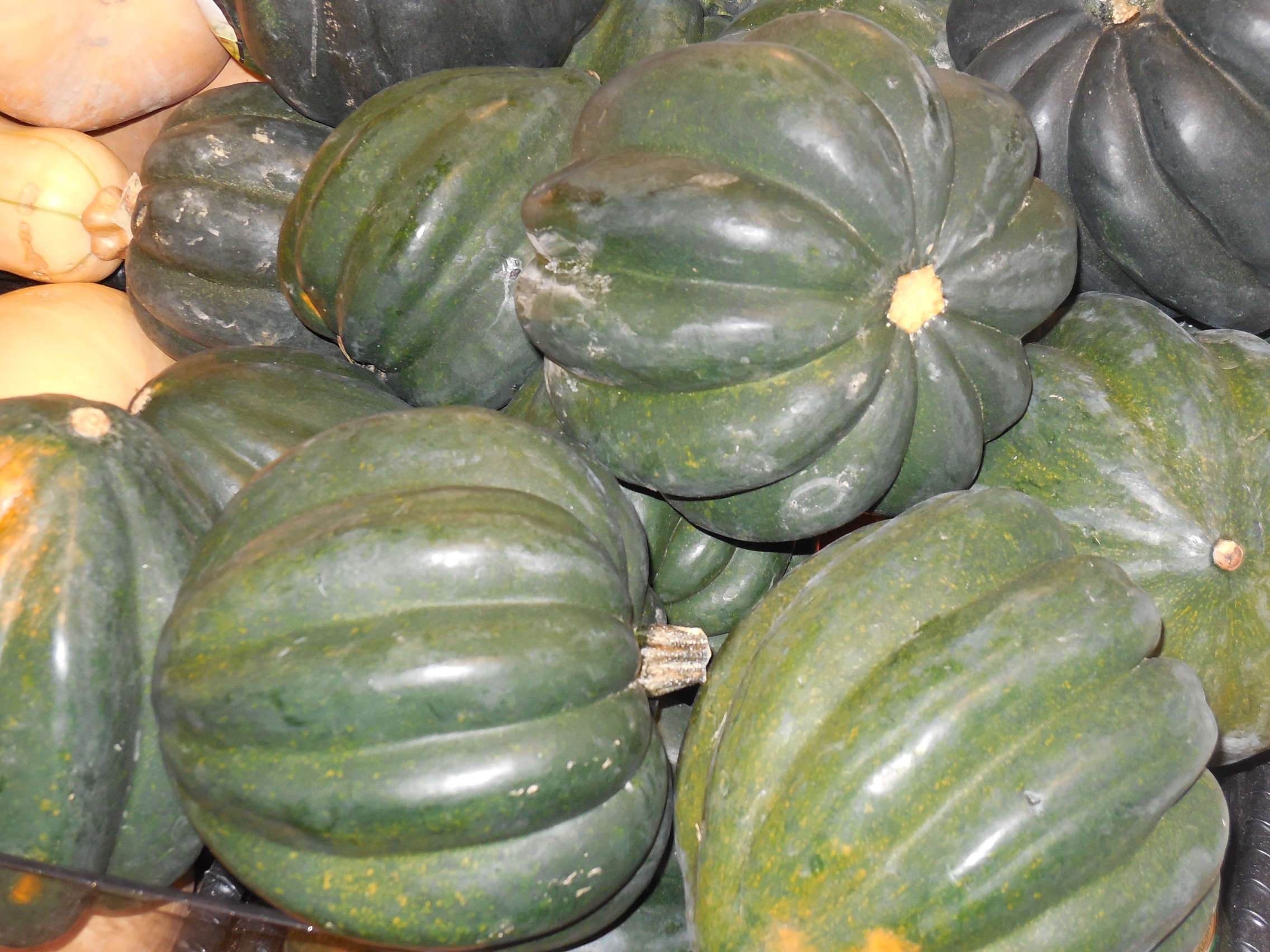 Butterkin Is A New Variety Of Squash Haul Produce
