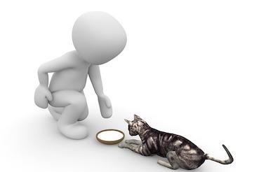 Stellungnahme von Pets Deli zu unserem Futtertest