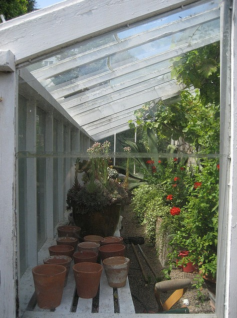 jardin greenhouse