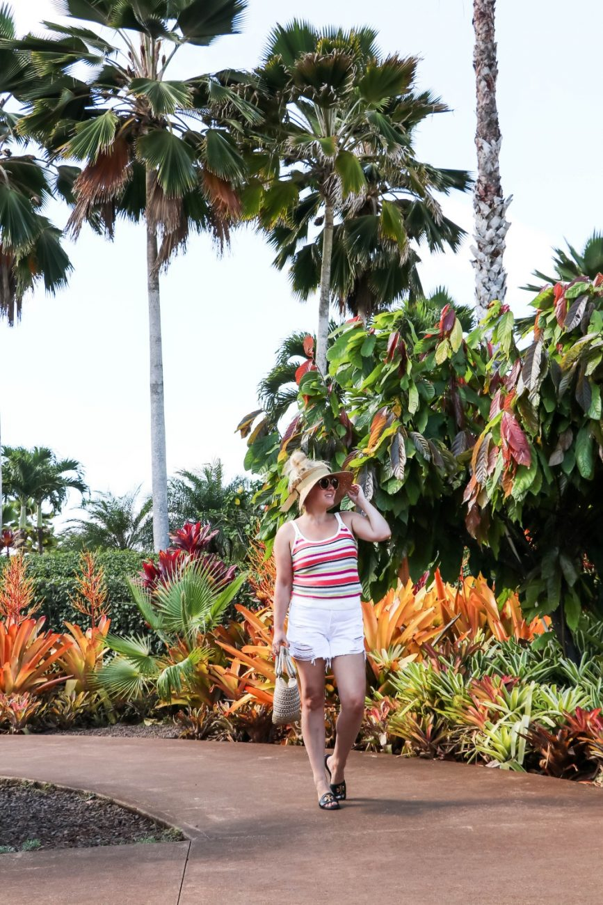 Visiting The Dole Plantation Have Need Want