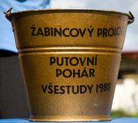 Tradiční pohár: kýbl plný žabince