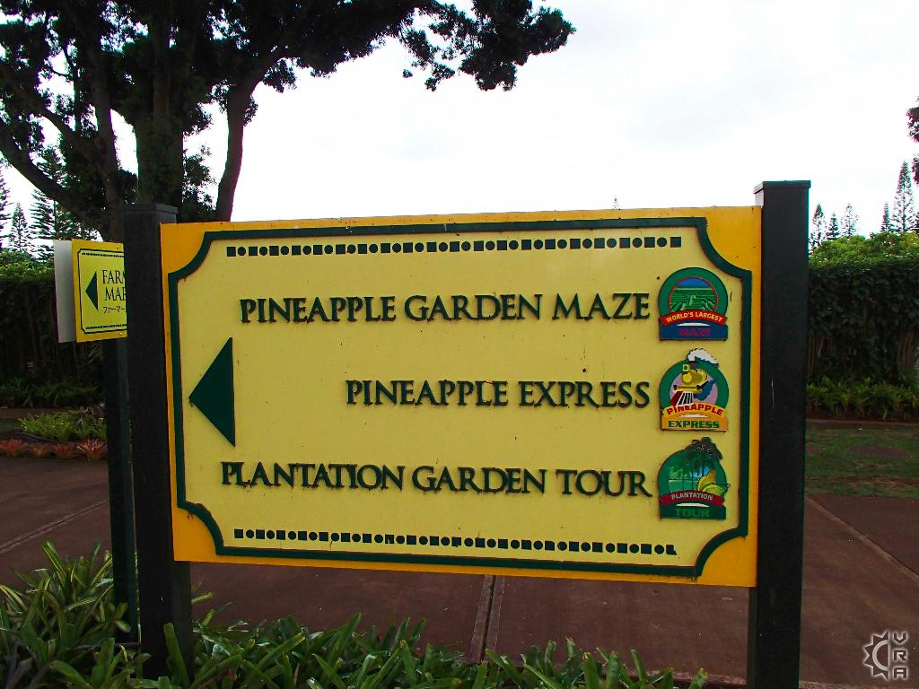 Dole Pineapple Plantation In North Shore Oahu Hawaii Hawaiian Beach Rentals