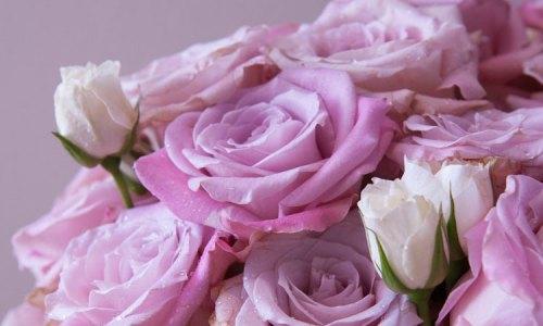 florals-thumb