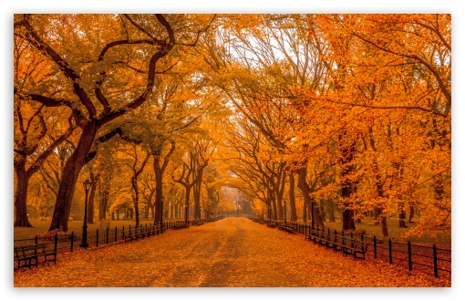 Dual Monitor Wallpaper Fall Beautiful Autumn Landscapes Of The World 4k Hd Desktop