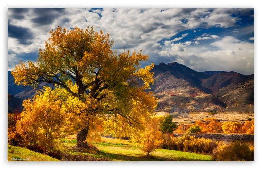 Fall Scene Desktop Wallpaper Beautiful Autumn Scenery Colorado 4k Hd Desktop Wallpaper