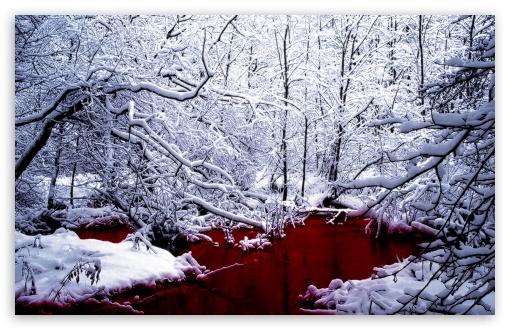 1440p Fall Wallpaper Bloody Winter 4k Hd Desktop Wallpaper For 4k Ultra Hd Tv