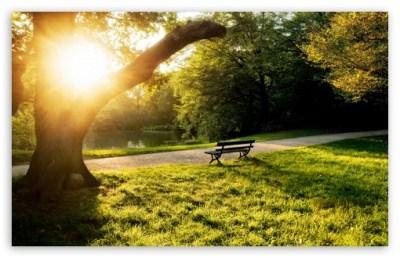 Calm Afternoon 4K HD Desktop Wallpaper for 4K Ultra HD TV • Tablet • Smartphone • Mobile Devices