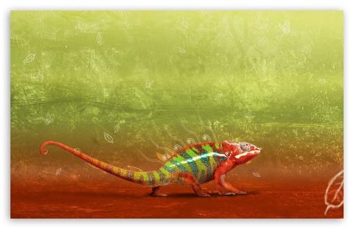 Iphone 7 Hd Wallpapers 1080p Colorful Chameleon 4k Hd Desktop Wallpaper For 4k Ultra Hd