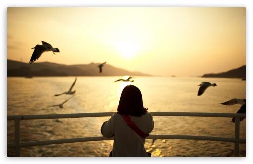 Hd Wallpaper Cute Girl Download Girl Watching The Sunset 4k Hd Desktop Wallpaper For 4k