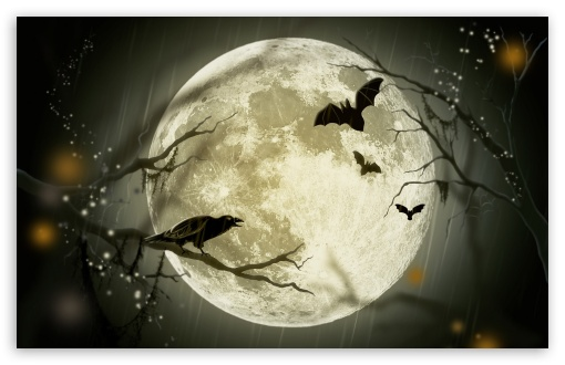 Fall Halloween Wallpaper Halloween Moon 4k Hd Desktop Wallpaper For 4k Ultra Hd Tv