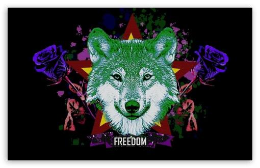 Trippy Wallpapers Hd Iphone Hipster Wolf 4k Hd Desktop Wallpaper For 4k Ultra Hd Tv