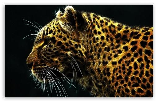Jaguar Animal Wallpaper Leopard 4k Hd Desktop Wallpaper For 4k Ultra Hd Tv Wide