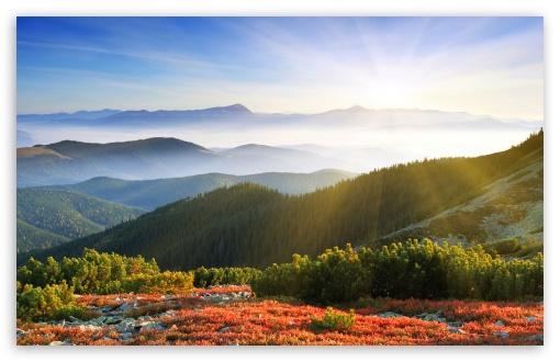 Fall Dual Monitor Wallpaper Morning Sunshine With Fog 4k Hd Desktop Wallpaper For 4k