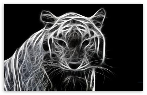 Black 3d Hd Wallpapers 1080p Widescreen White Tiger 3d 4k Hd Desktop Wallpaper For 4k Ultra Hd Tv