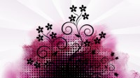 Pink And Black Wallpaper Designs 5 Cool Hd Wallpaper ...