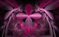 Black And Pink Wall Art 1 Cool Hd Wallpaper ...