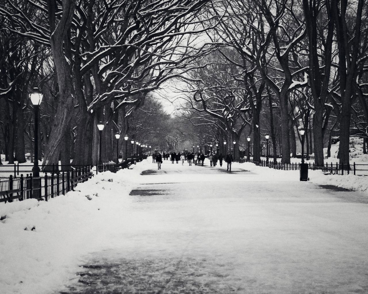 Iphone 5 Falling Snow Wallpaper Black Winter 16 Free Hd Wallpaper Hdblackwallpaper Com