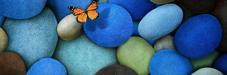 Dragon Ball Z 3d Wallpaper Download Butterfly Wallpaper Blue Pebbles Hd Desktop Wallpapers