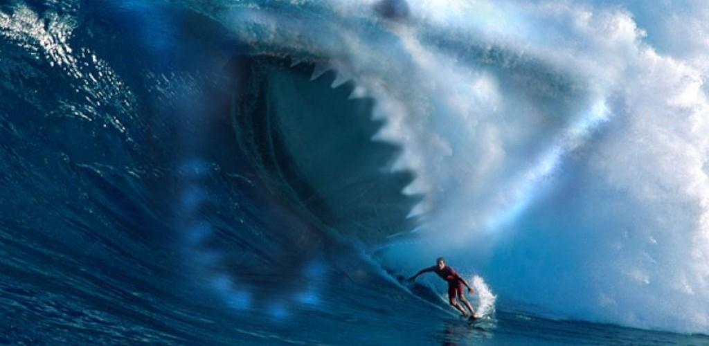 3d Fish Hd Live Wallpaper Fish Wallpaper Shark Download Hd Desktop Wallpapers 4k Hd