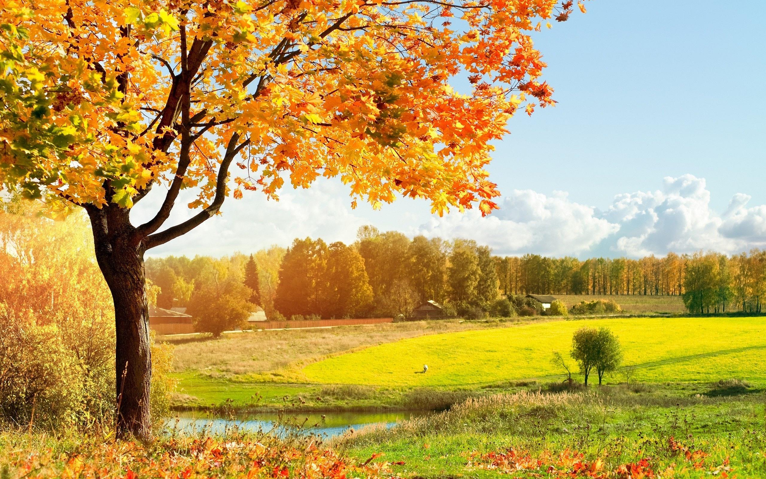 Space 3d Live Wallpaper Autumn Landscape Pictures Hd Desktop Wallpapers 4k Hd