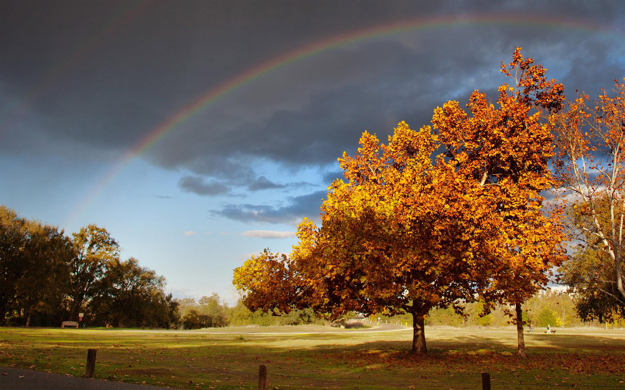 Free Fall Wallpaper With Animals Autumn Rainbow Wallpaper Hd Desktop Wallpapers 4k Hd