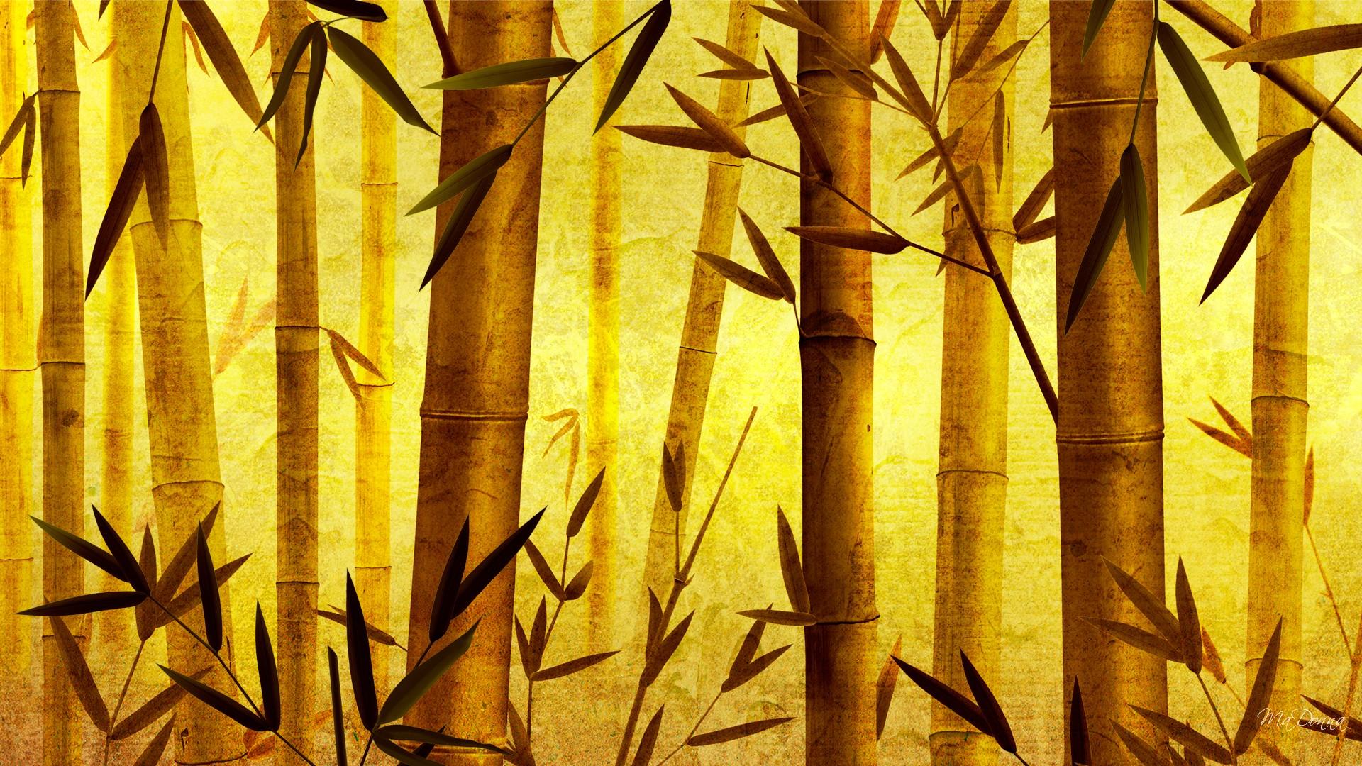 Wallpaper Cars Bamboo Wallpaper Background Hd Desktop Wallpapers 4k Hd