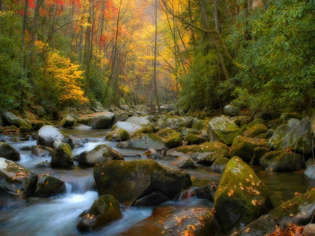 The Fall Tv Series Wallpaper Creek Pictures Hd Desktop Wallpapers 4k Hd