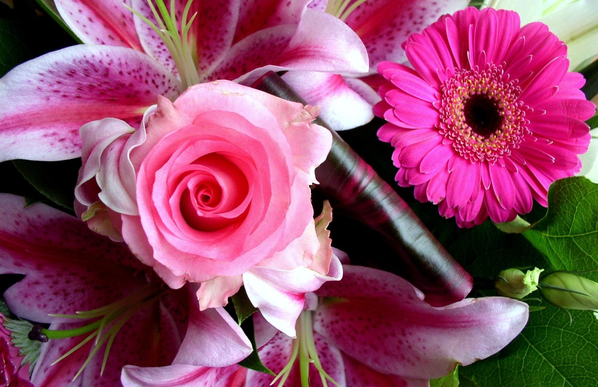 Hd Wallpaper Beautiful Flower Pictures A7 Hd Desktop Wallpapers 4k Hd