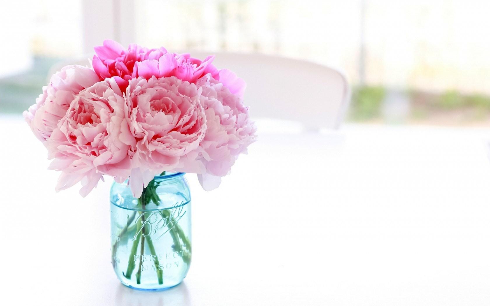 Wallpaper Cars Peonies Flowers Pink Jar Hd Desktop Wallpapers 4k Hd