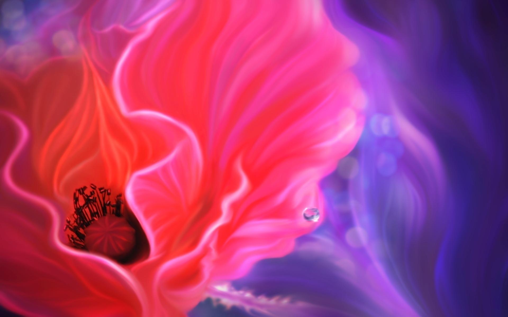 Poppy Wallpaper For Iphone Poppy Wallpaper Magnificent Hd Desktop Wallpapers 4k Hd