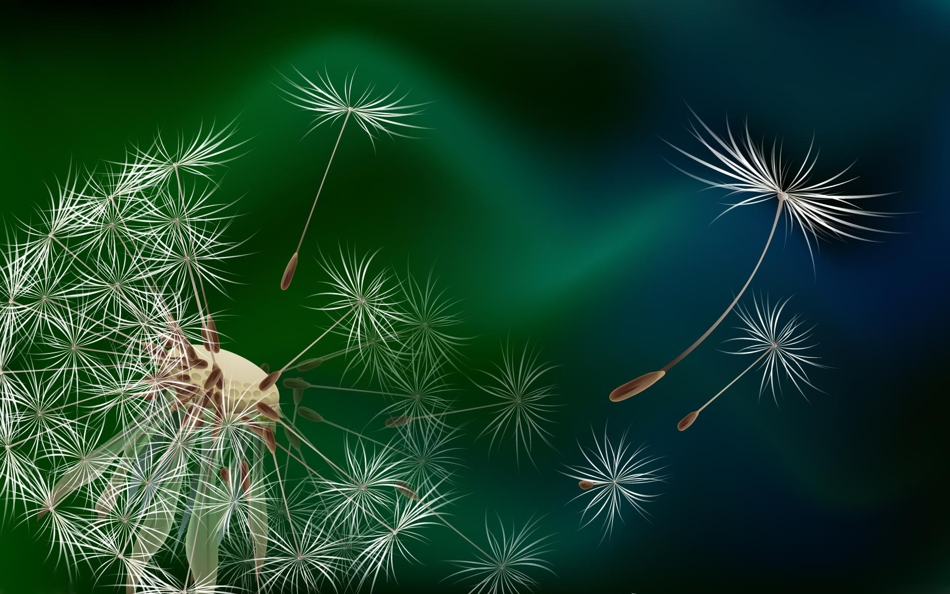 Www 3d Flower Wallpaper Com Flower Wallpaper Dandelion 13 High Resolution Wallpaper