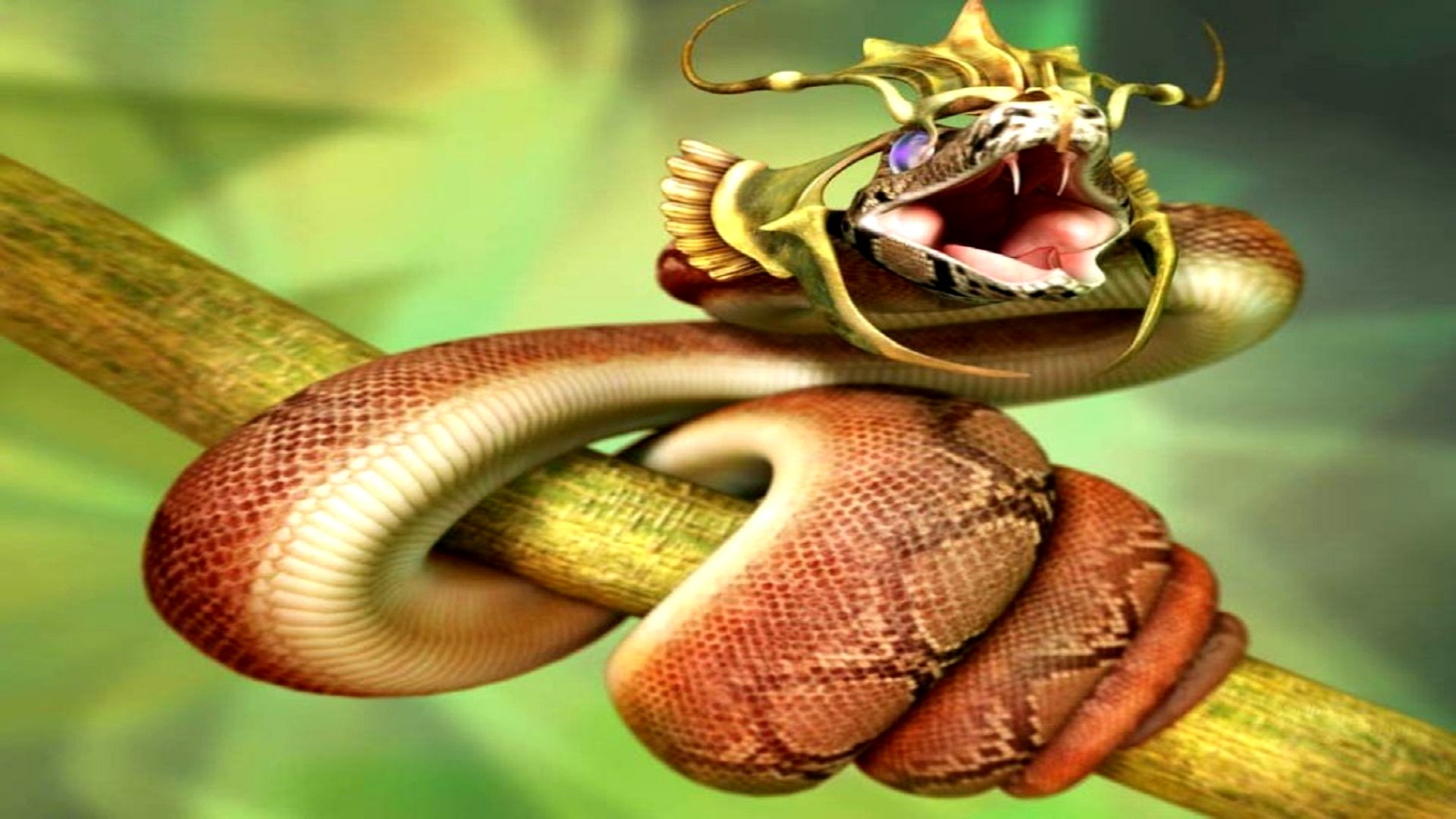Funny Wallpapers For Desktop Hd Snake Hd Free Wallpapers For Desktop Hd Wallpaper