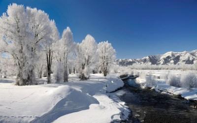winter-landscape-free-desktop-hd-wallpapers - HD Wallpaper