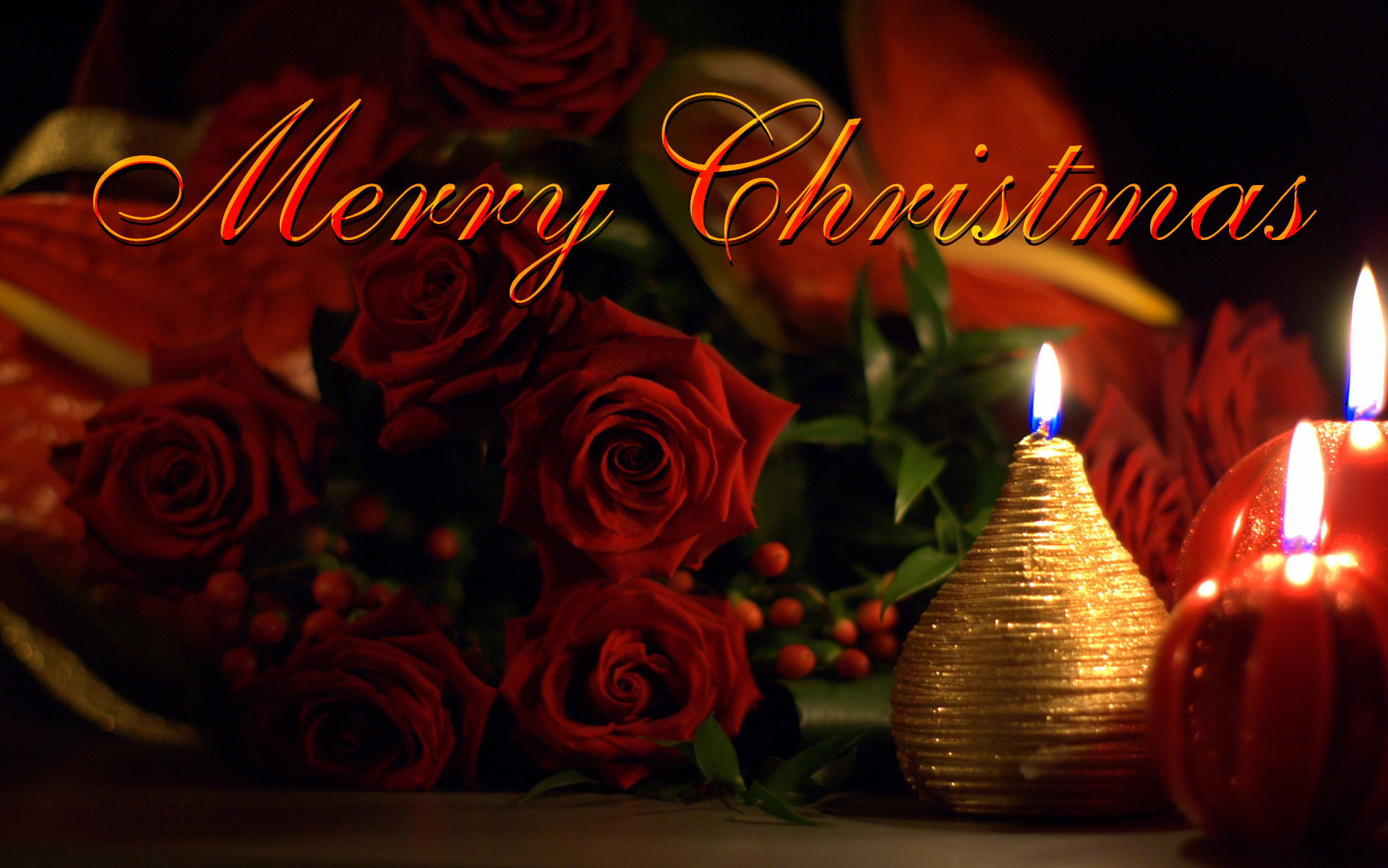 3d Picture Wallpaper Merry Christmas Ecard Beautiful Roses And Candles Fre Hd