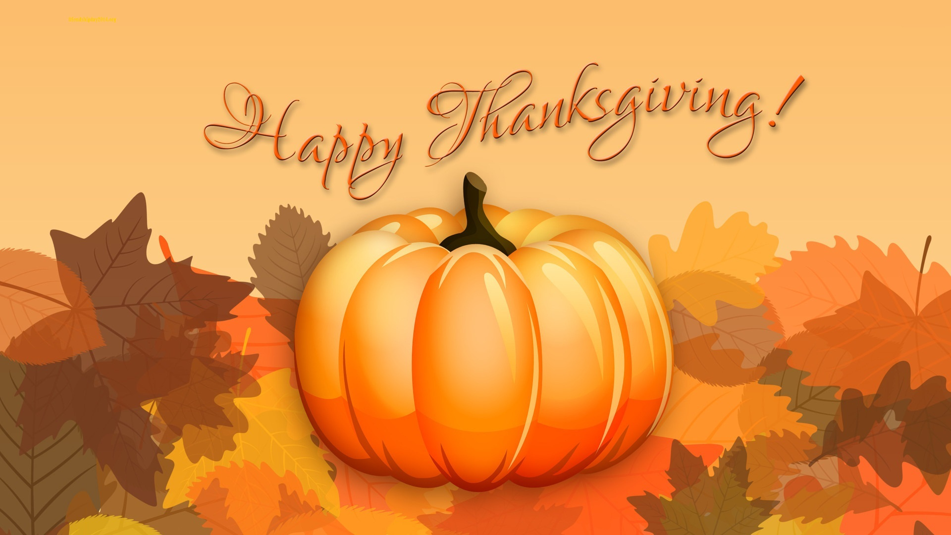 Funny Wallpapers For Desktop Hd Funny Wallpapers Free For Desktop Thanksgiving Hd Wallpaper