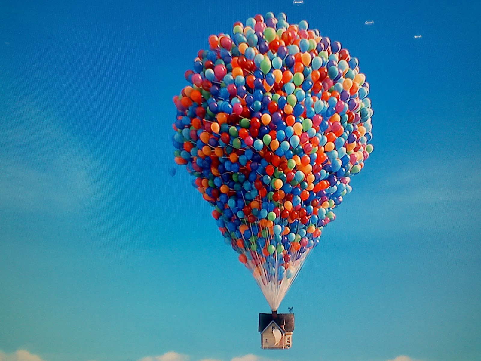 Funny Wallpapers For Desktop Hd Bloon In Air Hd Desktop Wallpapers Hd Wallpaper