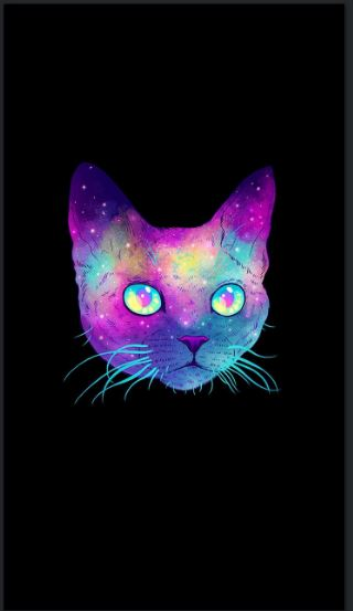 Cute Emoji Wallpaper Iphone Cat Iphone Wallpaper Tumblr Hd Wallpaper