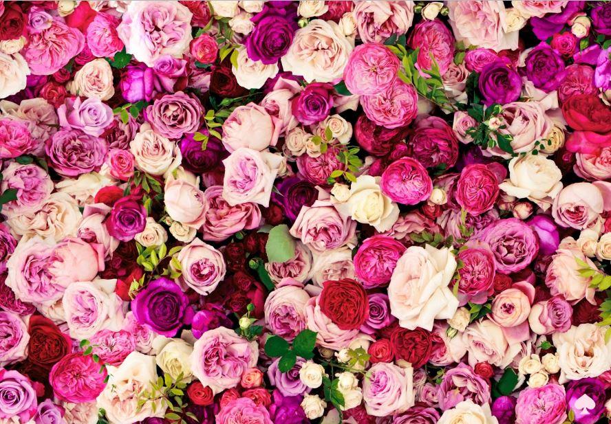 Cute Wallpapers We Heart Kate Spade Iphone Wallpaper Hd Wallpaper